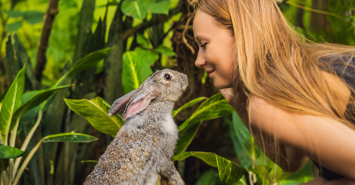 woman touching noses playfully with a rabbit