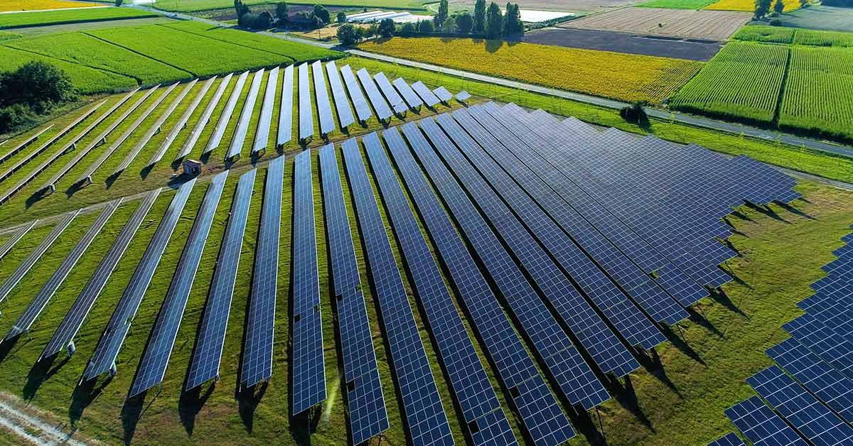 field full of solar panels