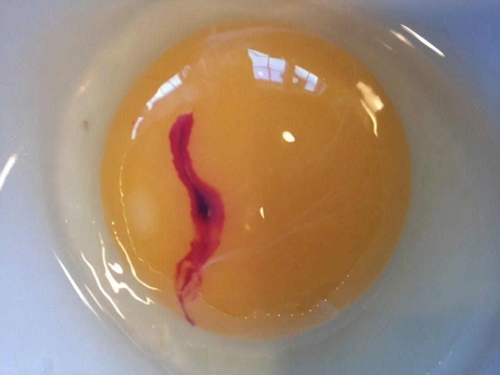 Blood spots in yolks