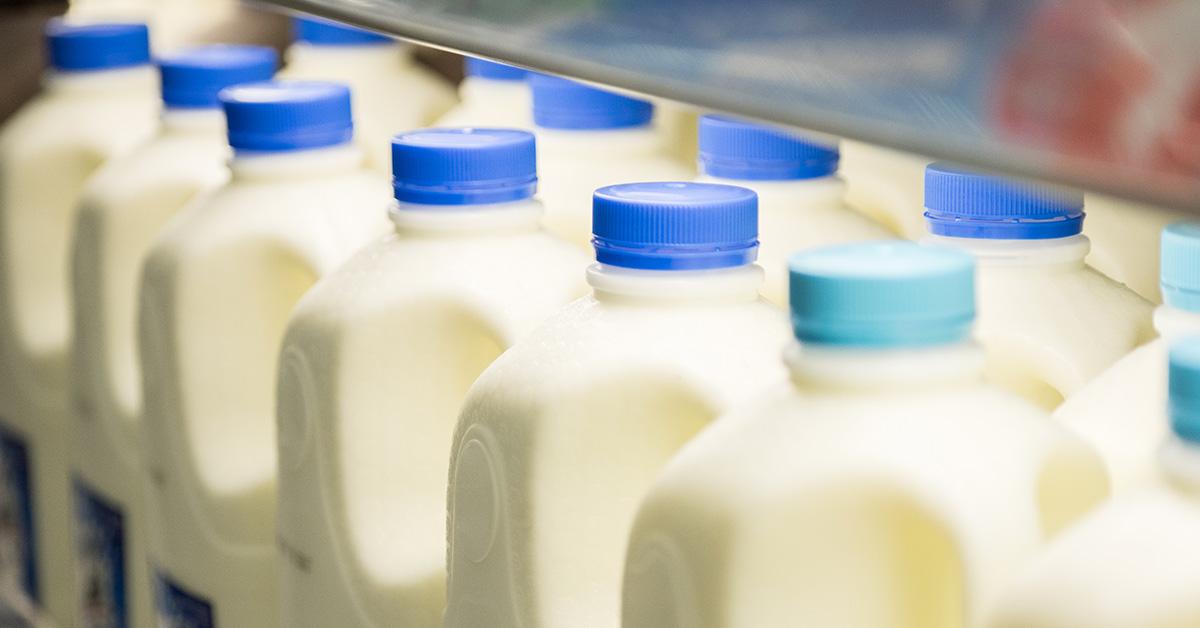 refrigerate milk